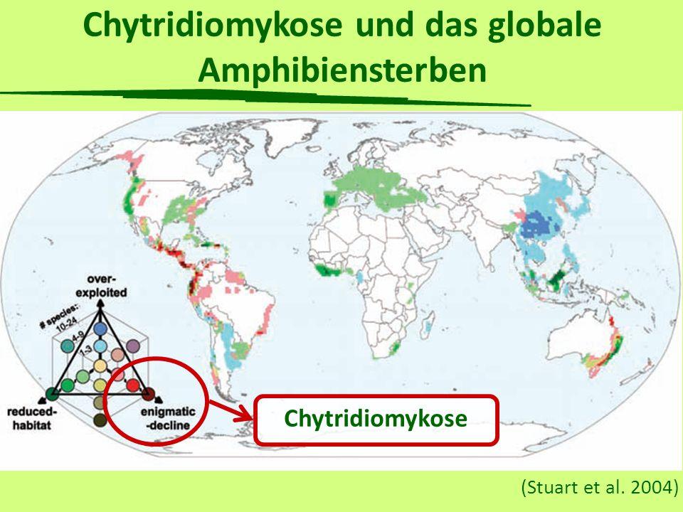 Temperatur als Mittel gegen den Chytridpilz? (Geiger et al., submitted) Infiziert geheilt