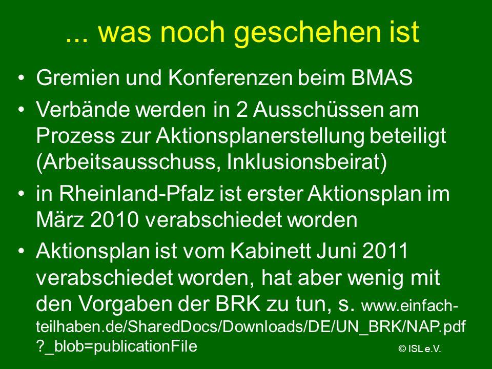 ... was noch geschehen ist Gremien und Konferenzen beim BMAS Verbände werden in 2 Ausschüssen am Prozess zur Aktionsplanerstellung beteiligt (Arbeitsa
