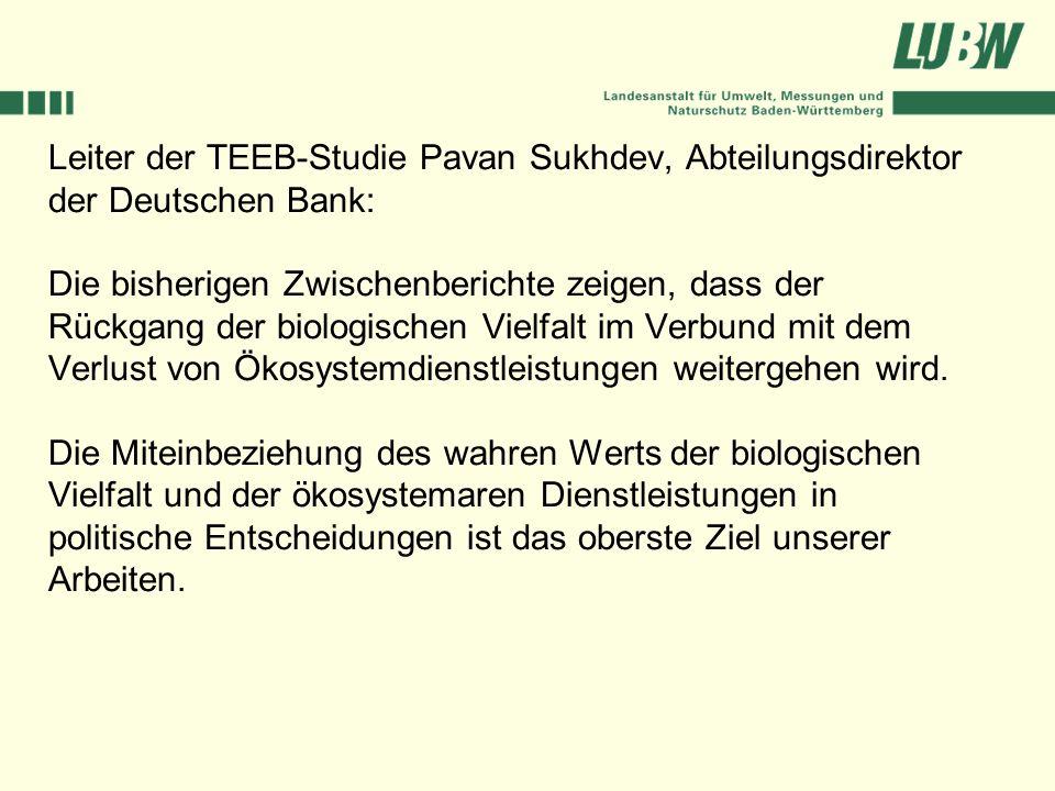 Leiter der TEEB-Studie Pavan Sukhdev, Abteilungsdirektor der Deutschen Bank: Die bisherigen Zwischenberichte zeigen, dass der Rückgang der biologische