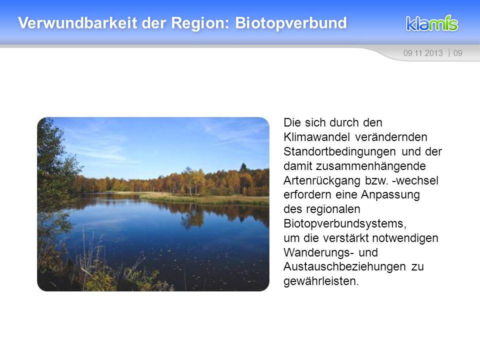 0909.11.2013 Verwundbarkeit der Region: Biotopverbund Die sich durch den Klimawandel verändernden Standortbedingungen und der damit zusammenhängende A