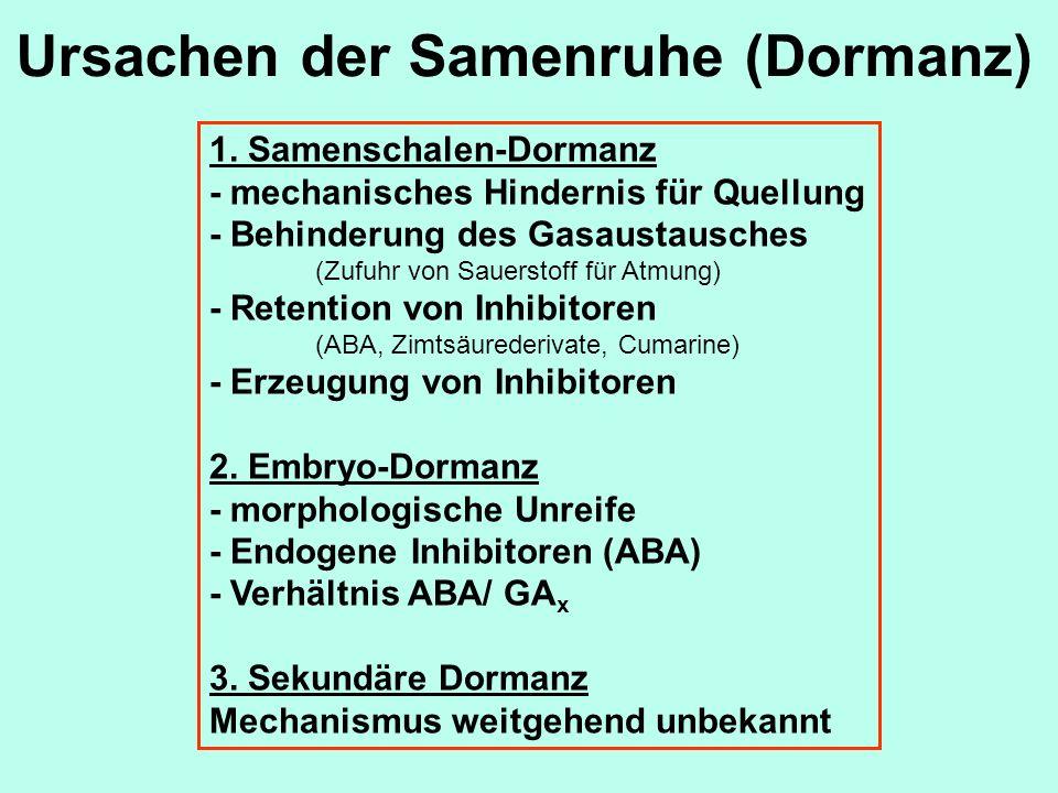 Ursachen der Samenruhe (Dormanz) 1.