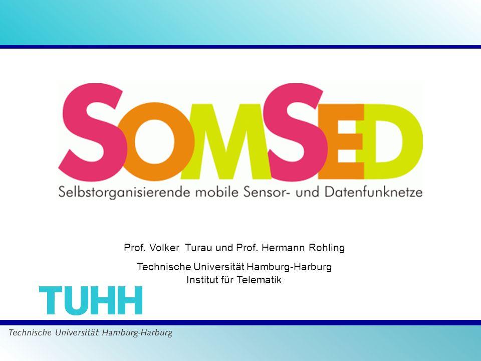 Prof. Volker Turau und Prof. Hermann Rohling Technische Universität Hamburg-Harburg Institut für Telematik