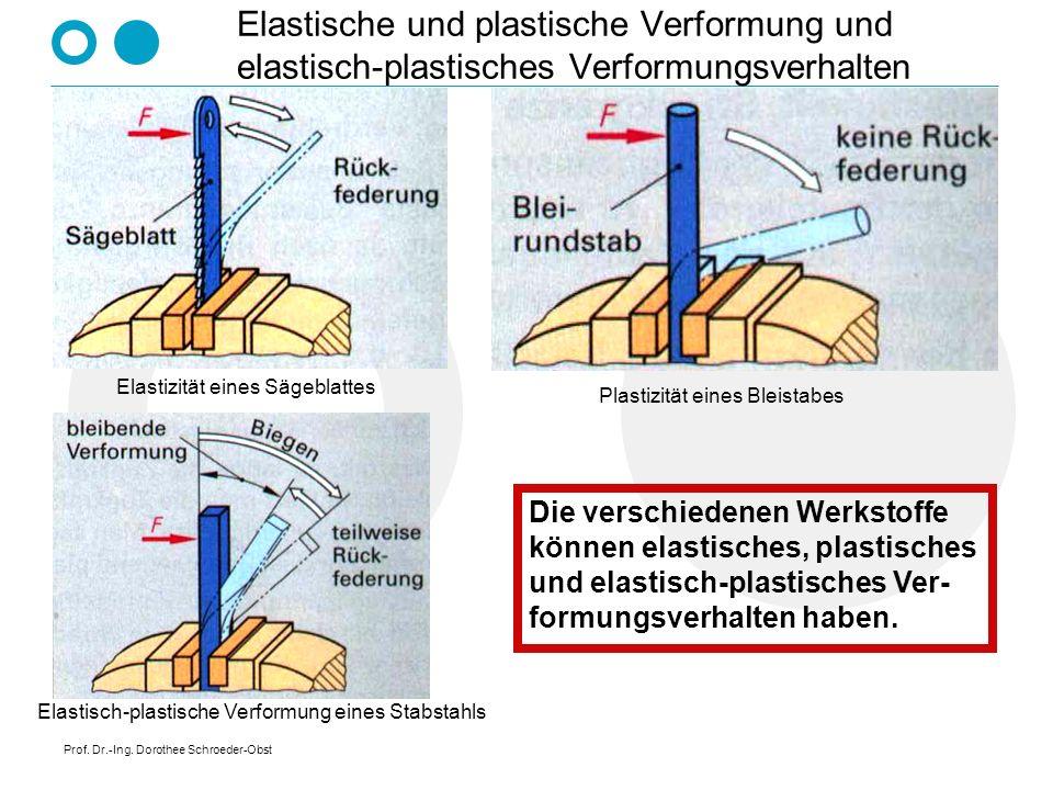 Prof. Dr.-Ing. Dorothee Schroeder-Obst Elastische und plastische Verformung und elastisch-plastisches Verformungsverhalten Elastizität eines Sägeblatt
