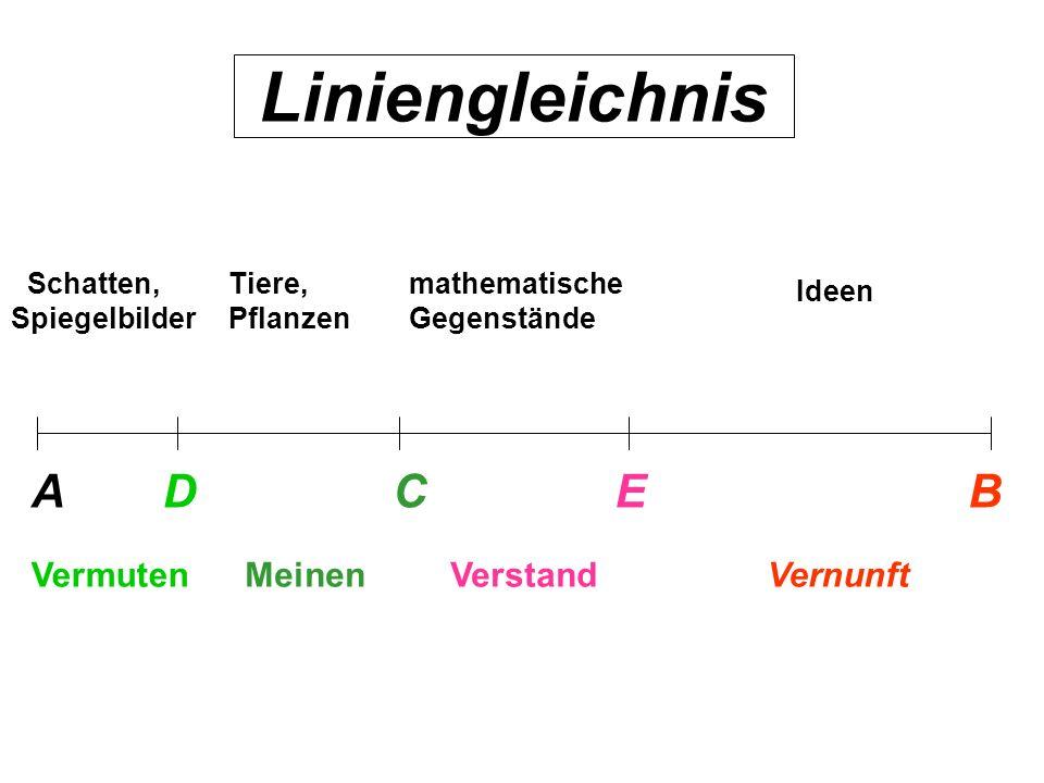 Liniengleichnis ABDCE VermutenMeinenVerstandVernunft Schatten, Spiegelbilder Tiere, Pflanzen mathematische Gegenstände Ideen Liniengleichnis