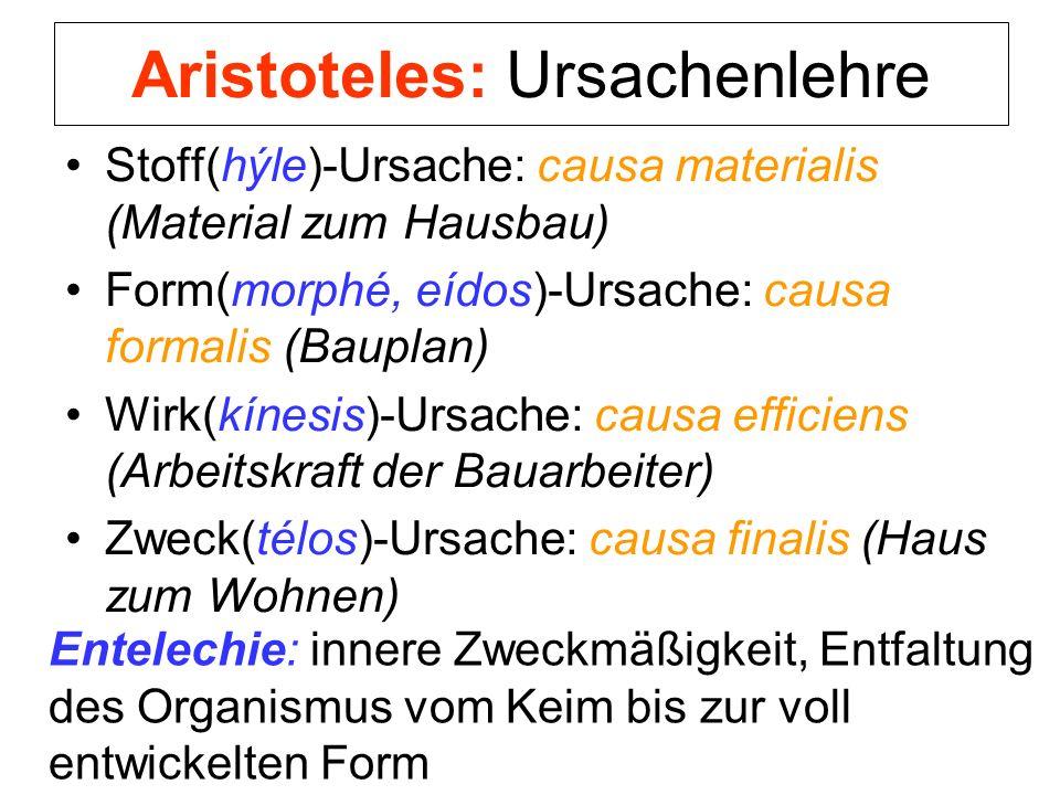 Aristoteles: Ursachenlehre Stoff(hýle)-Ursache: causa materialis (Material zum Hausbau) Form(morphé, eídos)-Ursache: causa formalis (Bauplan) Wirk(kín