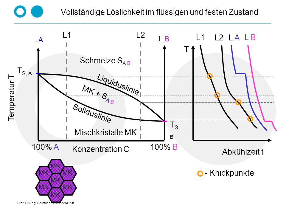 Prof. Dr.-Ing. Dorothee Schroeder-Obst Vollkommene Unlöslichkeit im festen und flüssigen Zustand am Beispiel Eisen - Blei Temperatur T Konzentration C