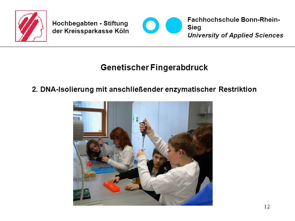 12 Hochbegabten - Stiftung der Kreissparkasse Köln Fachhochschule Bonn-Rhein- Sieg University of Applied Sciences Genetischer Fingerabdruck 2.