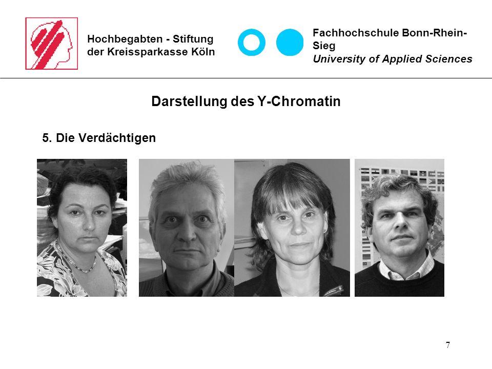 7 Hochbegabten - Stiftung der Kreissparkasse Köln Darstellung des Y-Chromatin 5.