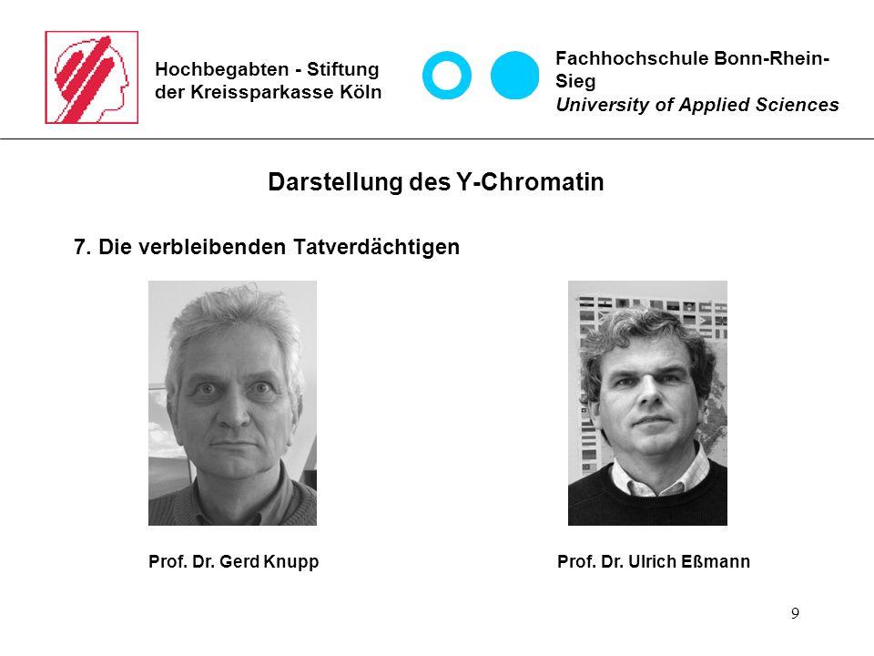 9 Hochbegabten - Stiftung der Kreissparkasse Köln Darstellung des Y-Chromatin 7.