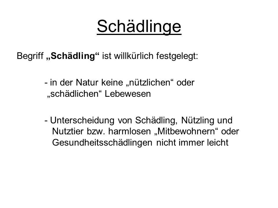 Schädlinge Begriff Schädling ist willkürlich festgelegt: - in der Natur keine nützlichen oder schädlichen Lebewesen - Unterscheidung von Schädling, Nü