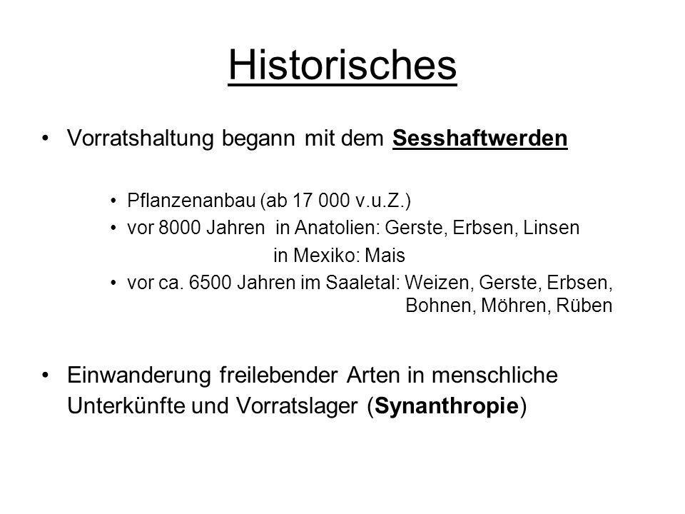 Historisches Vorratshaltung begann mit dem Sesshaftwerden Pflanzenanbau (ab 17 000 v.u.Z.) vor 8000 Jahren in Anatolien: Gerste, Erbsen, Linsen in Mex