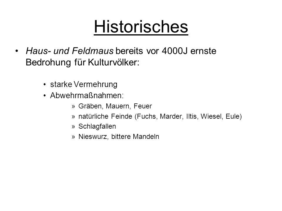 Historisches Haus- und Feldmaus bereits vor 4000J ernste Bedrohung für Kulturvölker: starke Vermehrung Abwehrmaßnahmen: »Gräben, Mauern, Feuer »natürl