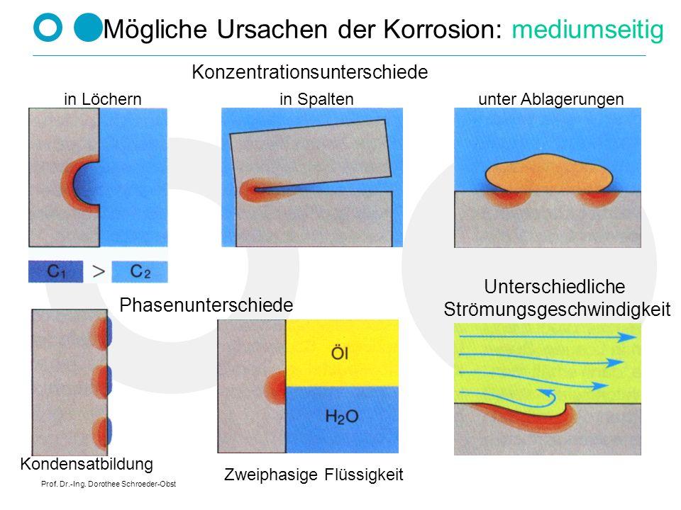 Prof. Dr.-Ing. Dorothee Schroeder-Obst Mögliche Ursachen der Korrosion: mediumseitig Konzentrationsunterschiede in Löchern Kondensatbildung unter Abla