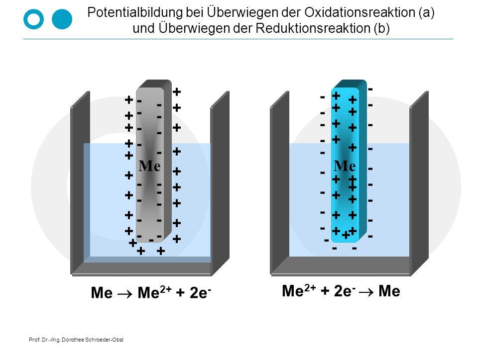 Prof. Dr.-Ing. Dorothee Schroeder-Obst Potentialbildung bei Überwiegen der Oxidationsreaktion (a) und Überwiegen der Reduktionsreaktion (b) Me Me 2+ +