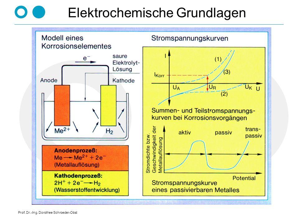 Prof. Dr.-Ing. Dorothee Schroeder-Obst Elektrochemische Grundlagen
