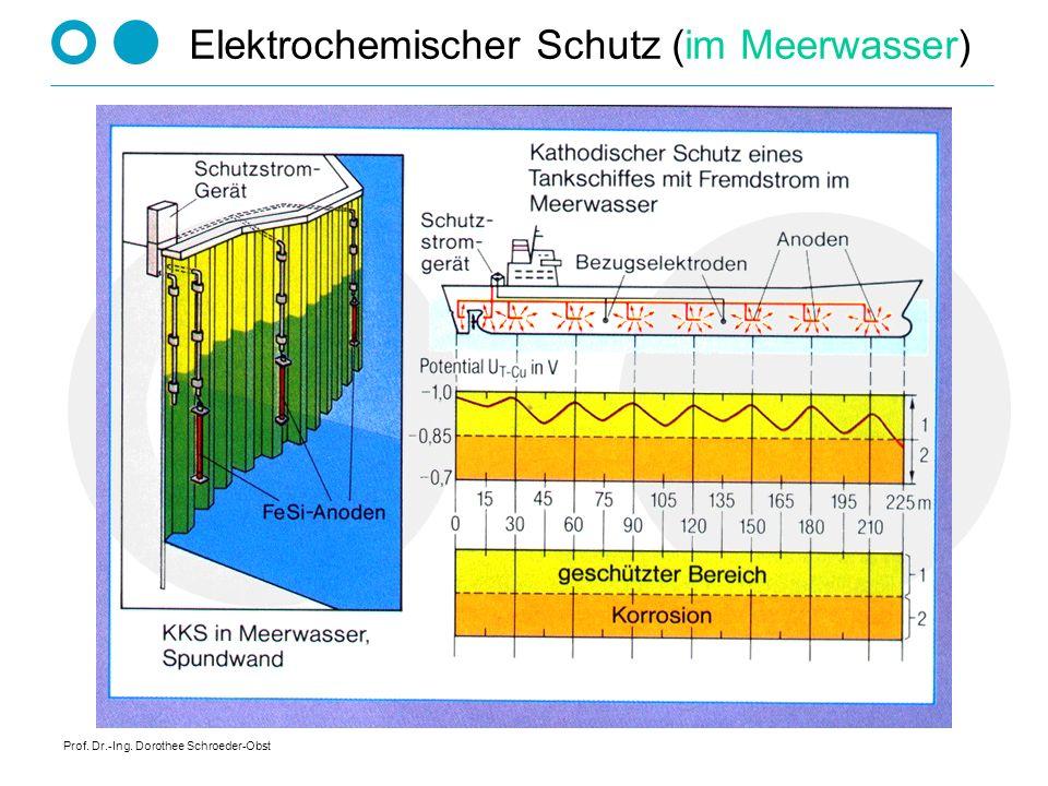 Prof. Dr.-Ing. Dorothee Schroeder-Obst Elektrochemischer Schutz (im Meerwasser)