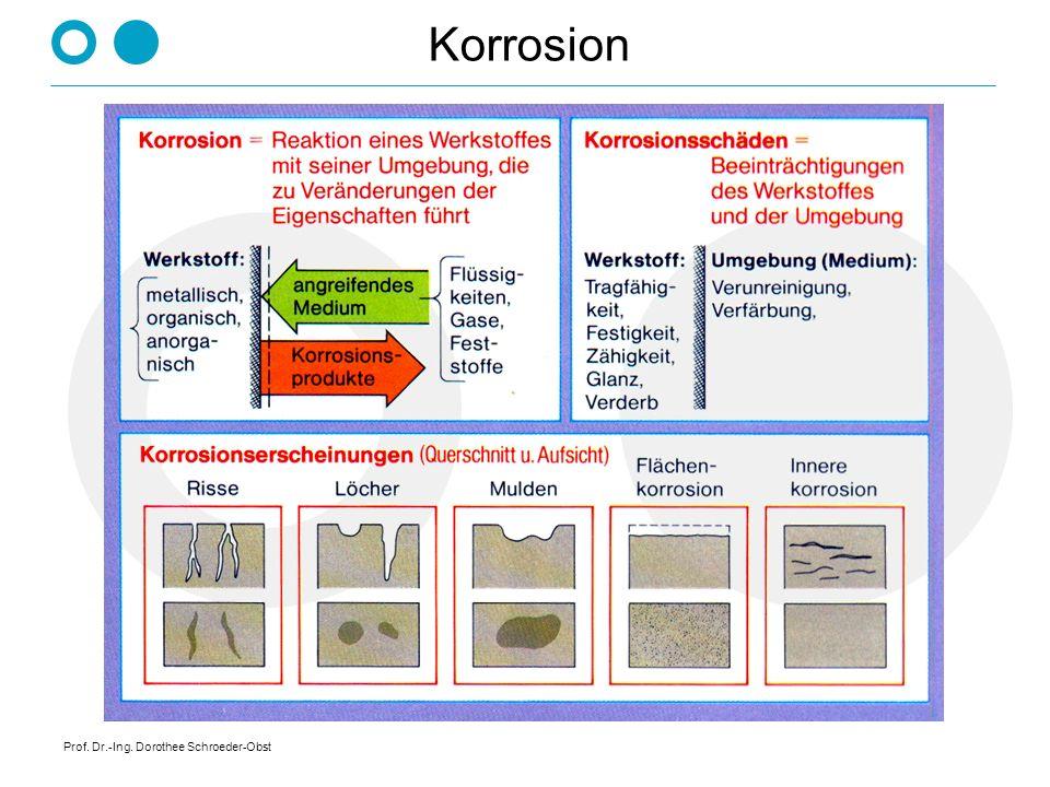 Prof. Dr.-Ing. Dorothee Schroeder-Obst Korrosion