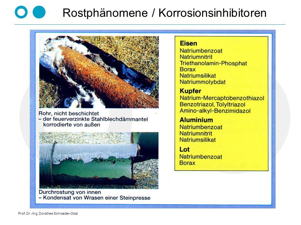 Prof. Dr.-Ing. Dorothee Schroeder-Obst Rostphänomene / Korrosionsinhibitoren
