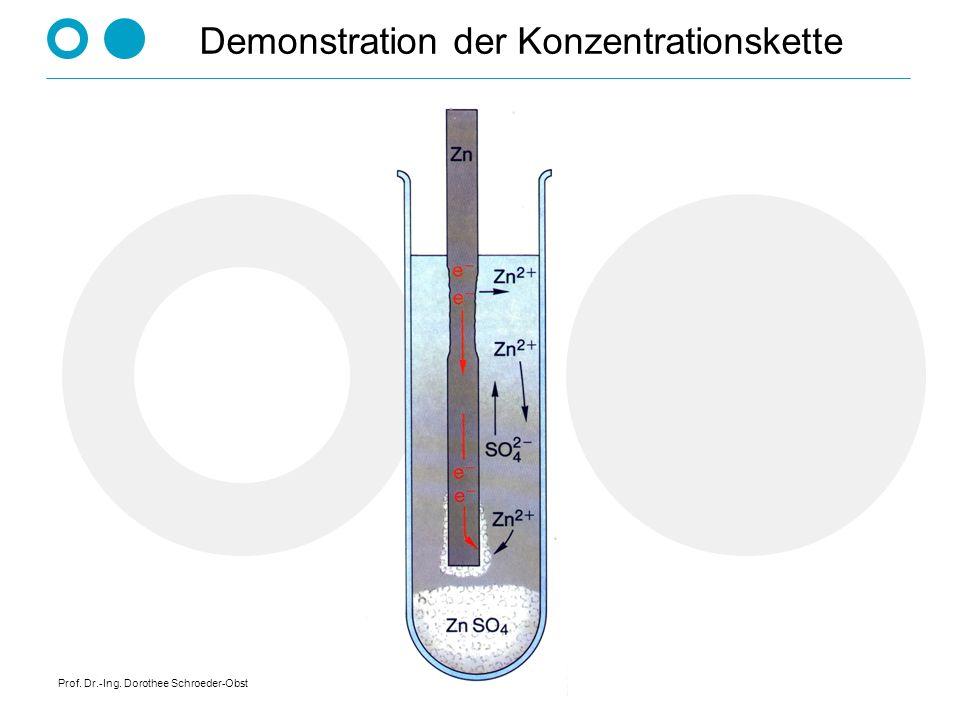 Prof. Dr.-Ing. Dorothee Schroeder-Obst Demonstration der Konzentrationskette