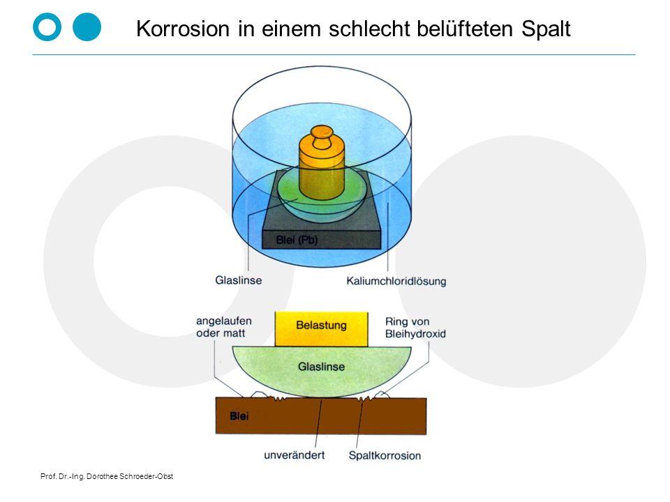 Prof. Dr.-Ing. Dorothee Schroeder-Obst Korrosion in einem schlecht belüfteten Spalt