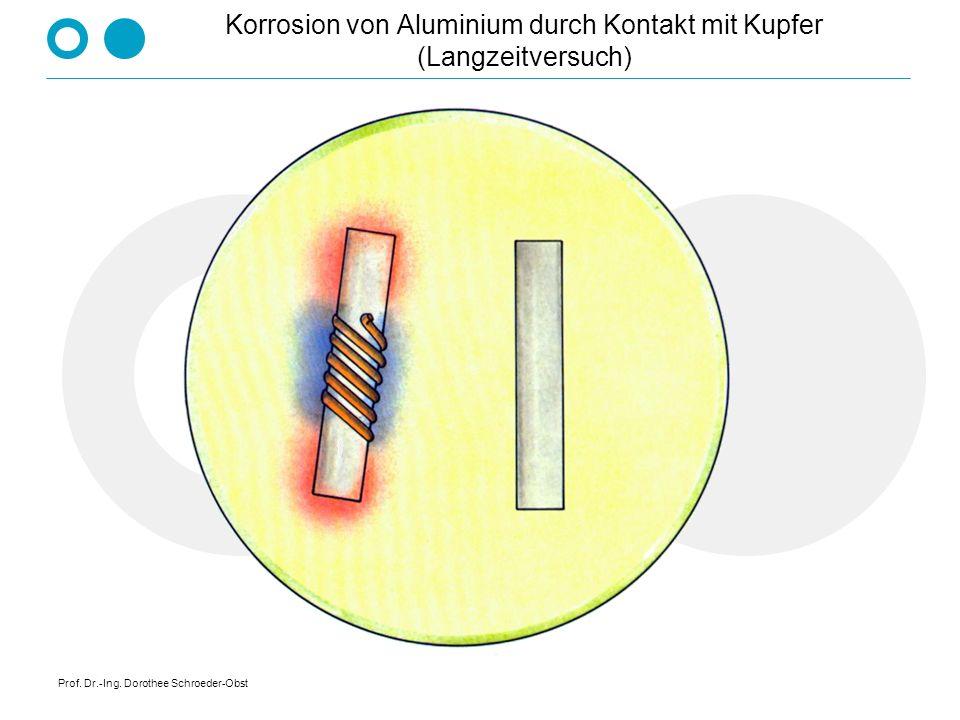 Prof. Dr.-Ing. Dorothee Schroeder-Obst Korrosion von Aluminium durch Kontakt mit Kupfer (Langzeitversuch)