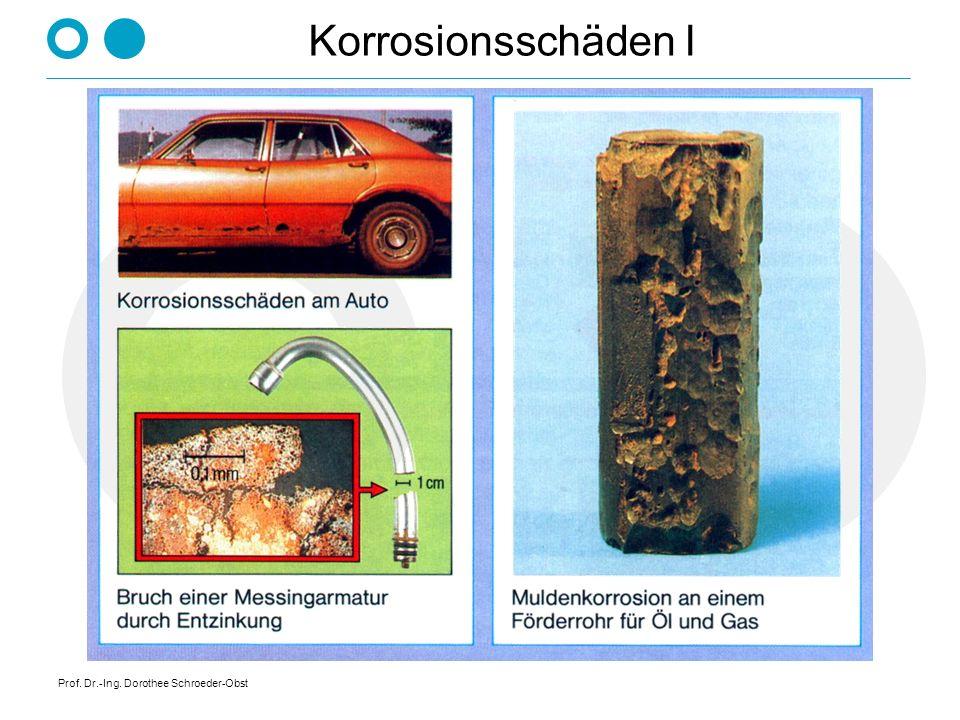 Prof. Dr.-Ing. Dorothee Schroeder-Obst Korrosionsschäden I
