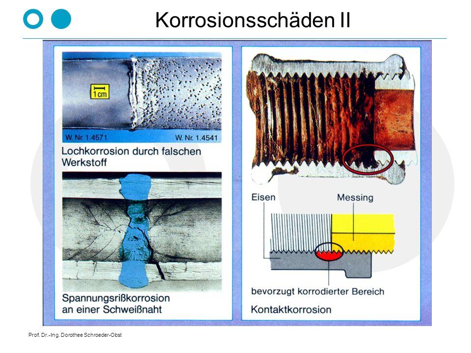 Prof. Dr.-Ing. Dorothee Schroeder-Obst Korrosionsschäden II