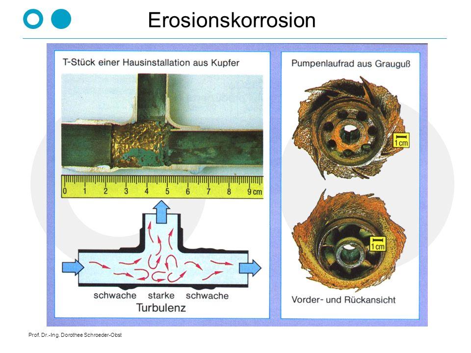 Prof. Dr.-Ing. Dorothee Schroeder-Obst Erosionskorrosion