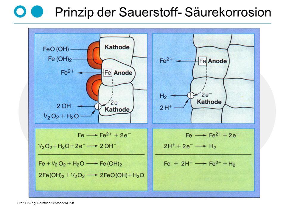 Prof. Dr.-Ing. Dorothee Schroeder-Obst Prinzip der Sauerstoff- Säurekorrosion