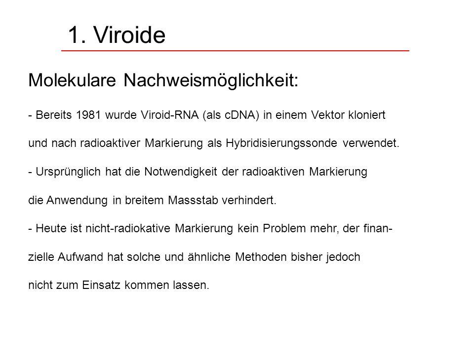 1. Viroide Molekulare Nachweismöglichkeit: - Bereits 1981 wurde Viroid-RNA (als cDNA) in einem Vektor kloniert und nach radioaktiver Markierung als Hy