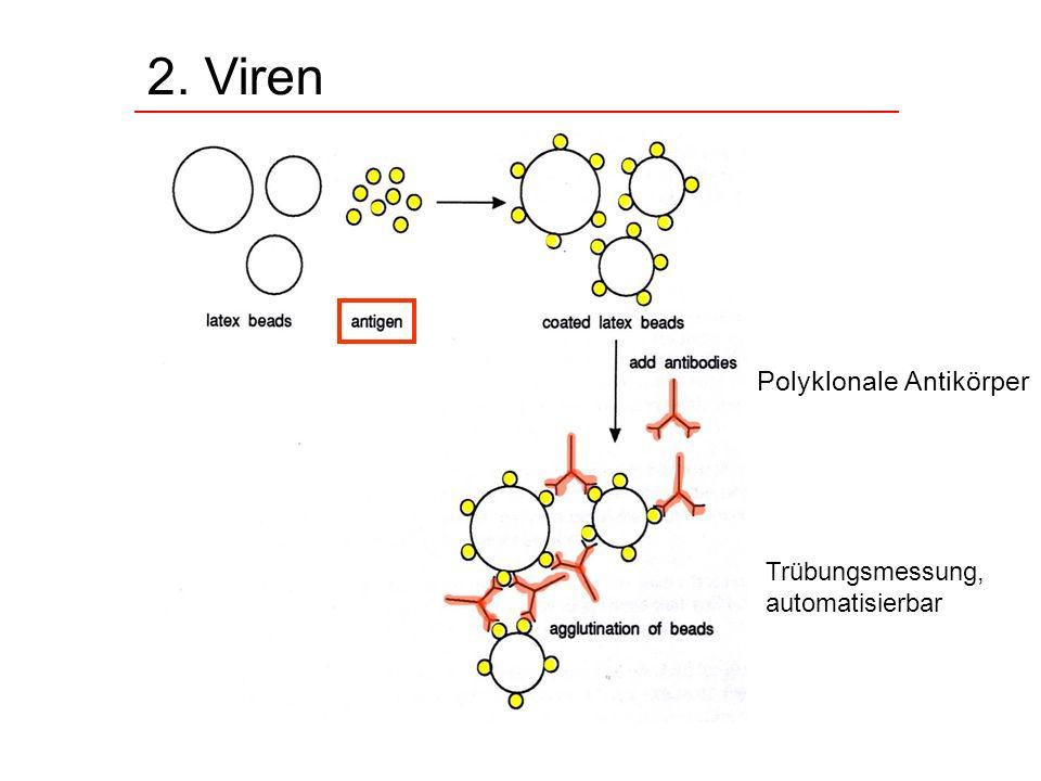 2. Viren Trübungsmessung, automatisierbar Polyklonale Antikörper