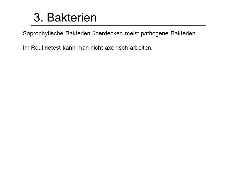 3. Bakterien Saprophytische Bakterien überdecken meist pathogene Bakterien. Im Routinetest kann man nicht axenisch arbeiten.