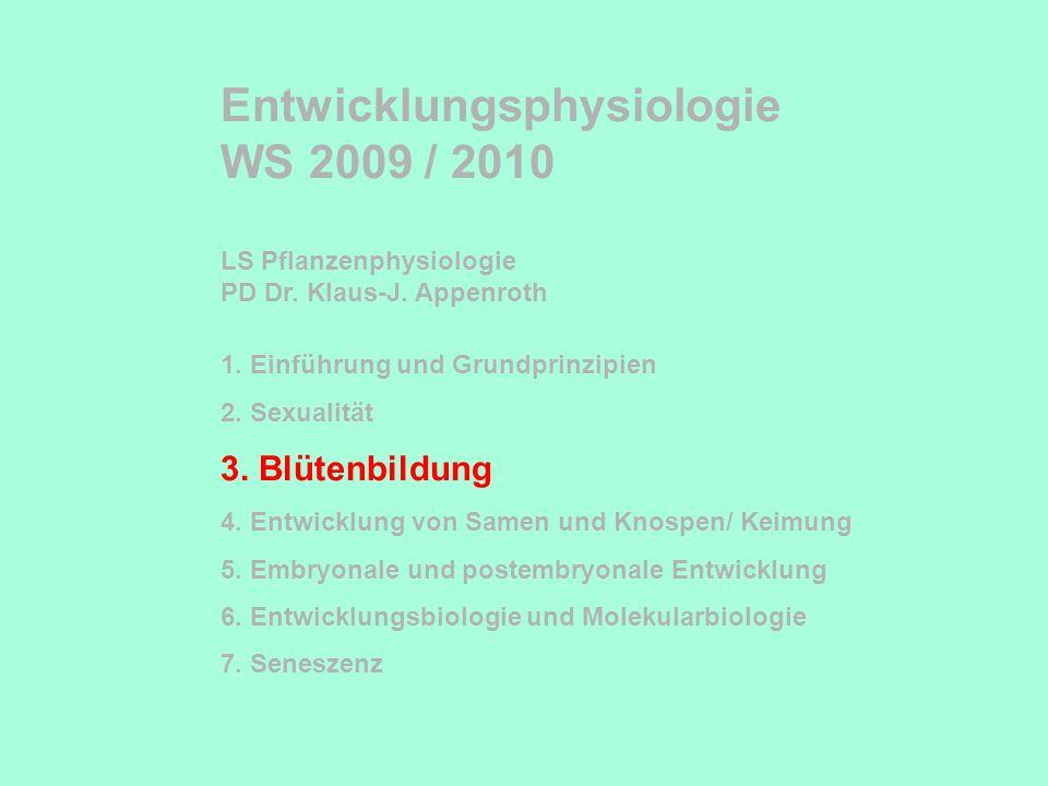Entwicklungsphysiologie WS 2009 / 2010 LS Pflanzenphysiologie PD Dr. Klaus-J. Appenroth 1. Einführung und Grundprinzipien 2. Sexualität 3. Blütenbildu