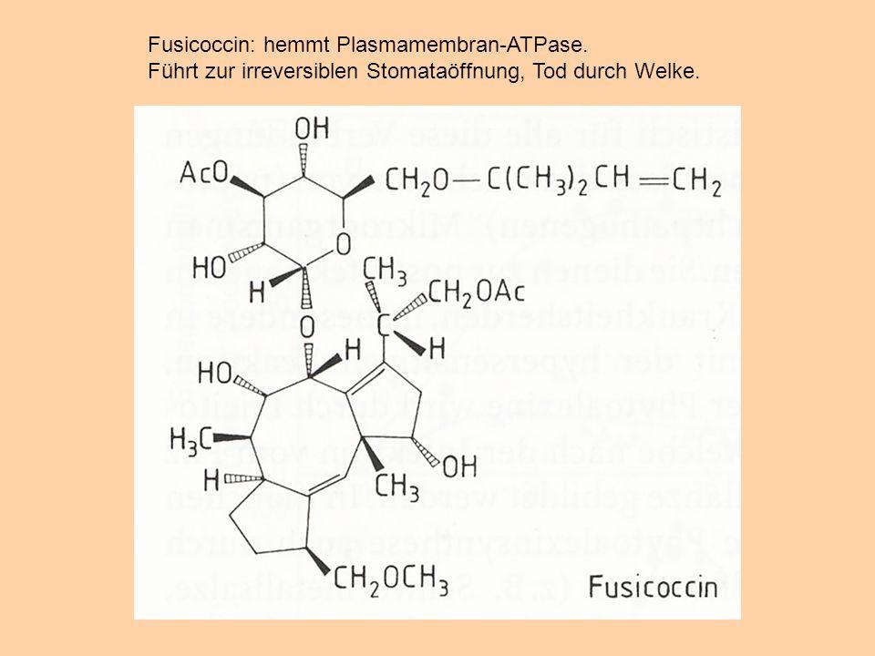 Fusicoccin: hemmt Plasmamembran-ATPase. Führt zur irreversiblen Stomataöffnung, Tod durch Welke.