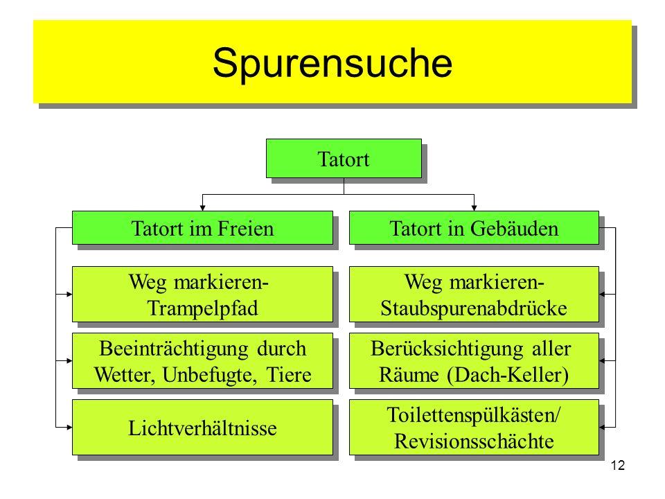 12 Spurensuche Tatort Tatort im Freien Tatort in Gebäuden Weg markieren- Trampelpfad Weg markieren- Trampelpfad Lichtverhältnisse Beeinträchtigung dur