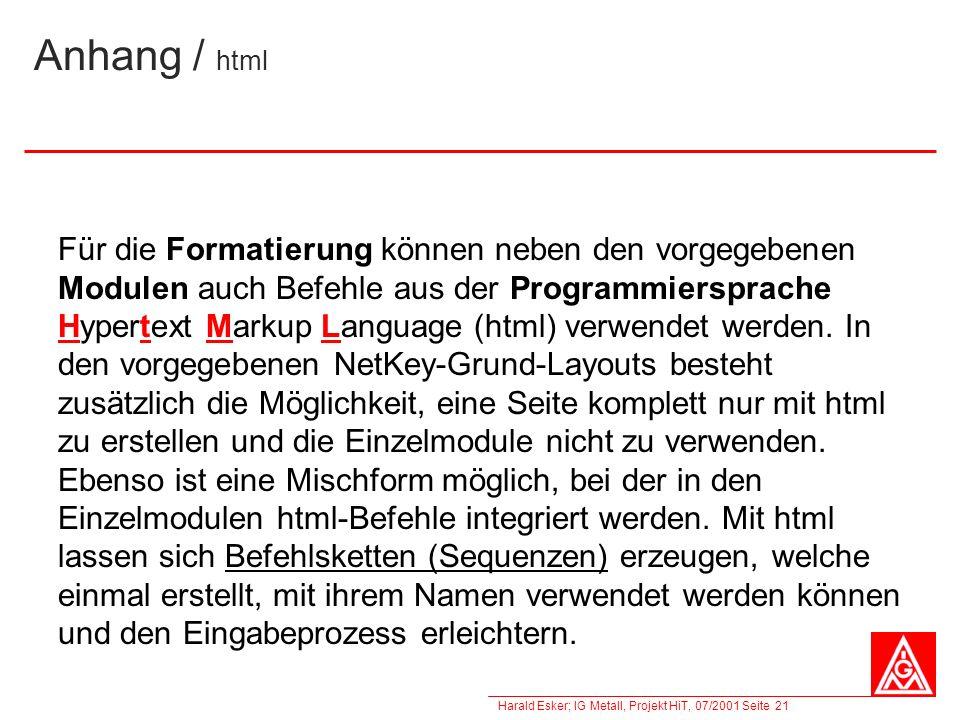 Harald Esker; IG Metall, Projekt HiT, 07/2001 Seite 21 Anhang / html Für die Formatierung können neben den vorgegebenen Modulen auch Befehle aus der P