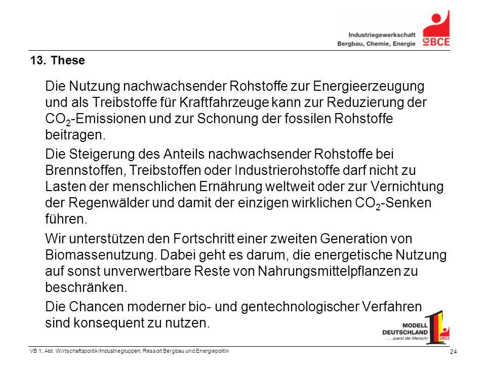 VB 1, Abt. Wirtschaftspolitik/Industriegruppen, Ressort Bergbau und Energiepolitik 24 Die Nutzung nachwachsender Rohstoffe zur Energieerzeugung und al
