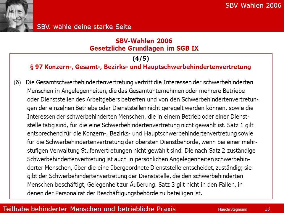 SBV Wahlen 2006 SBV. wähle deine starke Seite Teilhabe behinderter Menschen und betriebliche Praxis Hauch/Stegmann (4/5) § 97 Konzern-, Gesamt-, Bezir