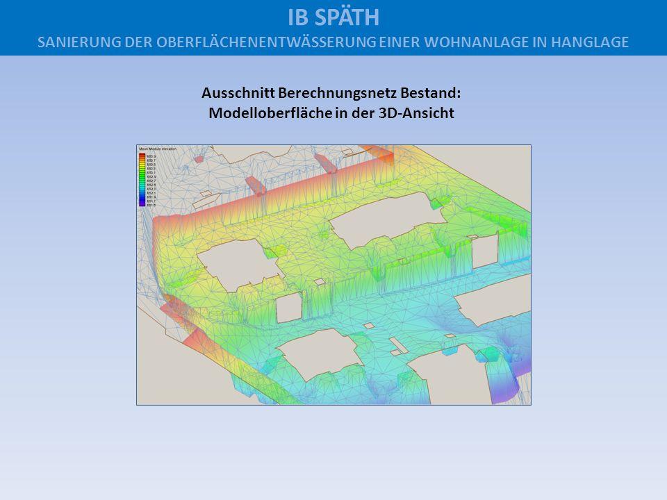 Ausschnitt Berechnungsnetz Bestand: Modelloberfläche in der 3D-Ansicht IB SPÄTH SANIERUNG DER OBERFLÄCHENENTWÄSSERUNG EINER WOHNANLAGE IN HANGLAGE