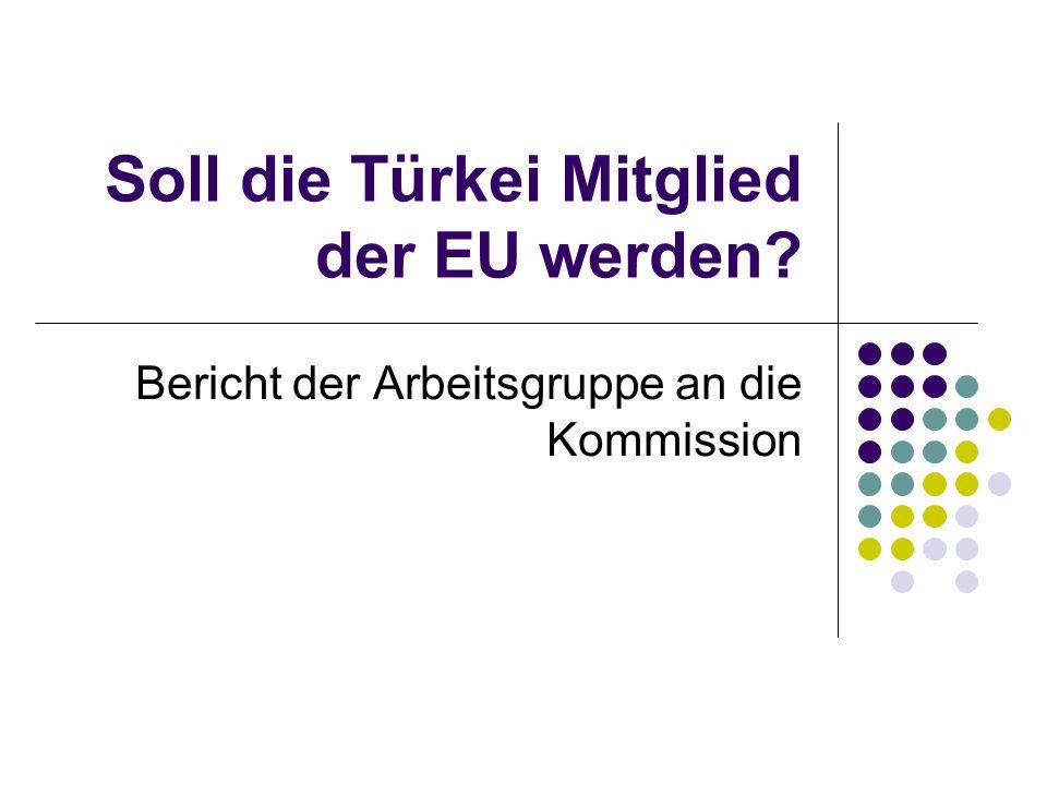 Soll die Türkei Mitglied der EU werden? Bericht der Arbeitsgruppe an die Kommission