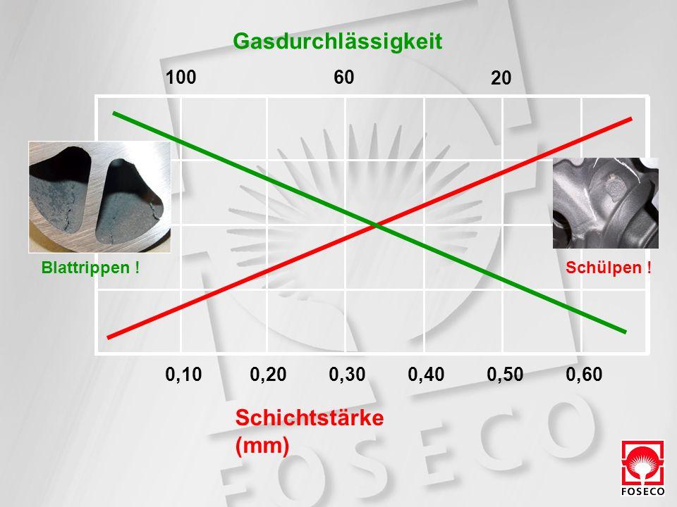 Schichtstärke (mm) 0,100,200,300,400,500,60 10060 20 Gasdurchlässigkeit Blattrippen !Schülpen !