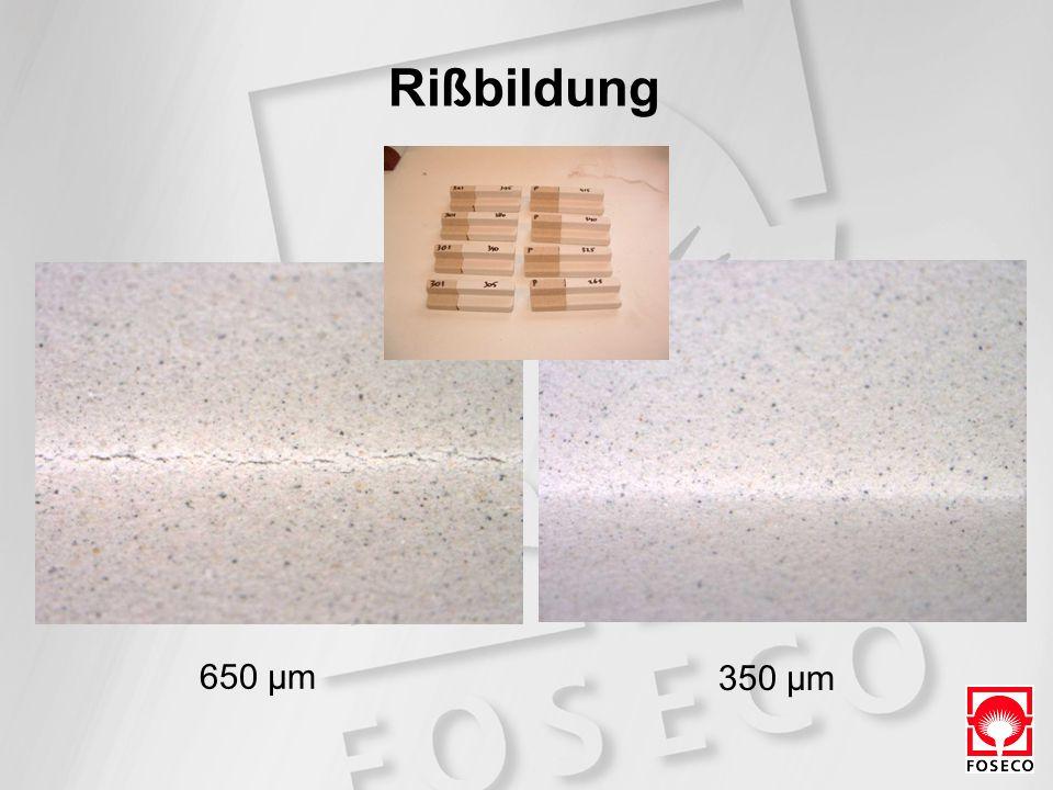 650 µm 350 µm Rißbildung
