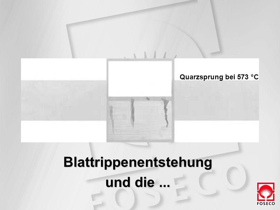 Blattrippenentstehung und die... Quarzsprung bei 573 °C