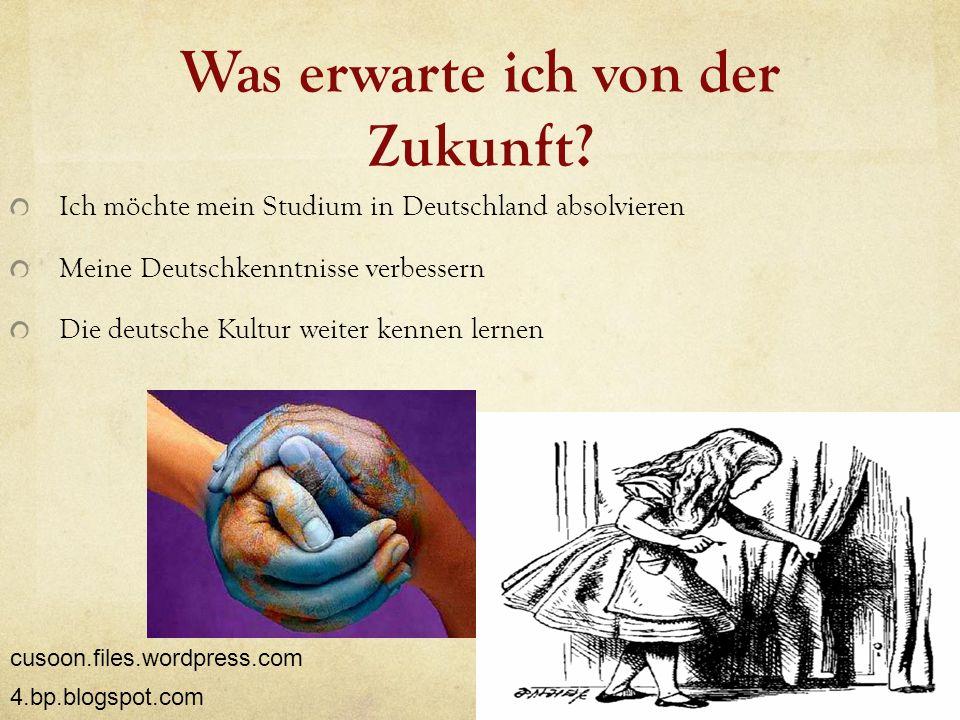 Was erwarte ich von der Zukunft? Ich möchte mein Studium in Deutschland absolvieren Meine Deutschkenntnisse verbessern Die deutsche Kultur weiter kenn