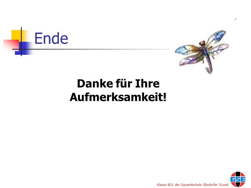 Klasse 8G1 der Gesamtschule Ebsdorfer Grund Ende Danke für Ihre Aufmerksamkeit!