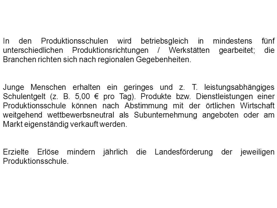 In den Produktionsschulen wird betriebsgleich in mindestens fünf unterschiedlichen Produktionsrichtungen / Werkstätten gearbeitet; die Branchen richte