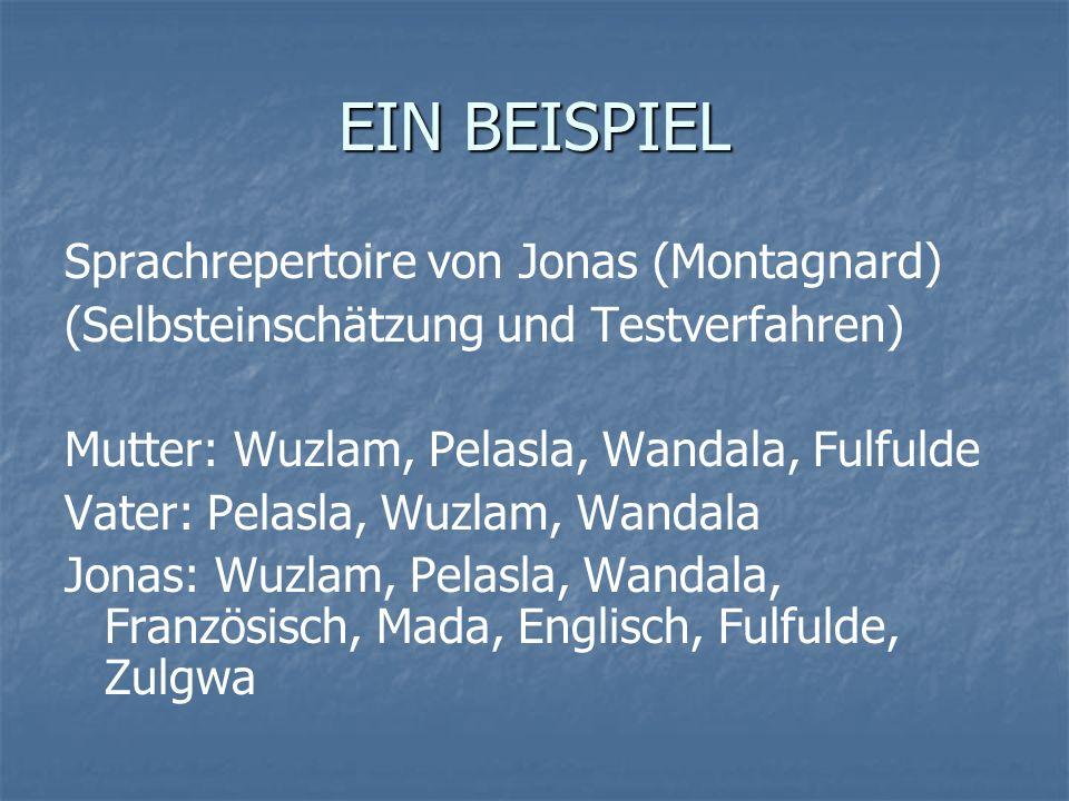 EIN BEISPIEL Sprachrepertoire von Jonas (Montagnard) (Selbsteinschätzung und Testverfahren) Mutter: Wuzlam, Pelasla, Wandala, Fulfulde Vater: Pelasla,