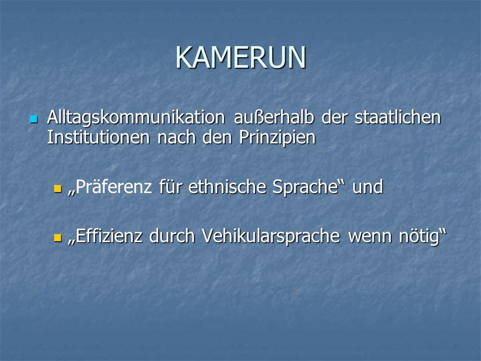 EXKURS: Sprachdokumentation Lehmann (2001/2004) Beide sind theoretisch unabhängig von einander, aber beide implizieren theoretische Fundierungen : Sprachdaten sind kein Rohmaterial, sondern bearbeitete Repräsentationen, z.B.