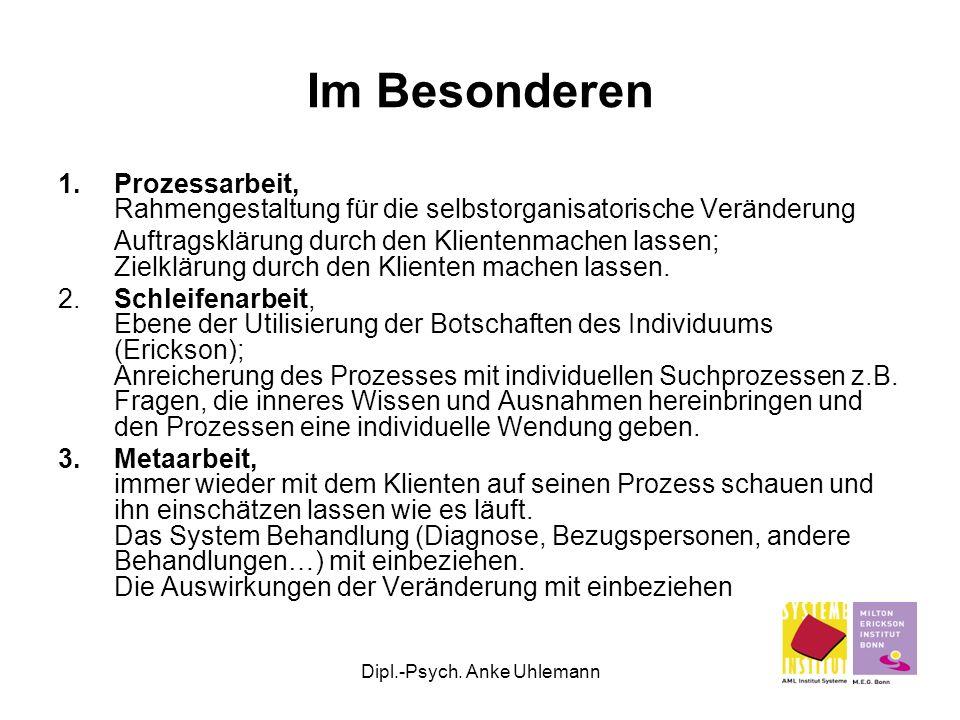 Dipl.-Psych. Anke Uhlemann Im Besonderen 1.Prozessarbeit, Rahmengestaltung für die selbstorganisatorische Veränderung Auftragsklärung durch den Klient