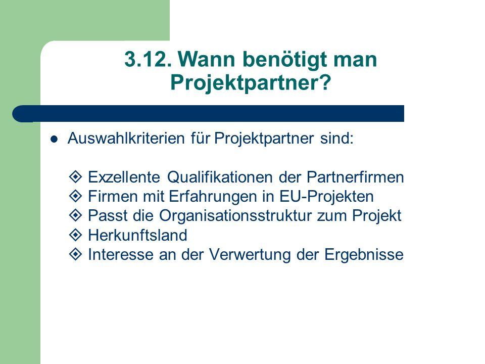 3.12. Wann benötigt man Projektpartner? Auswahlkriterien für Projektpartner sind: Exzellente Qualifikationen der Partnerfirmen Firmen mit Erfahrungen
